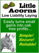 Little Acorns Review